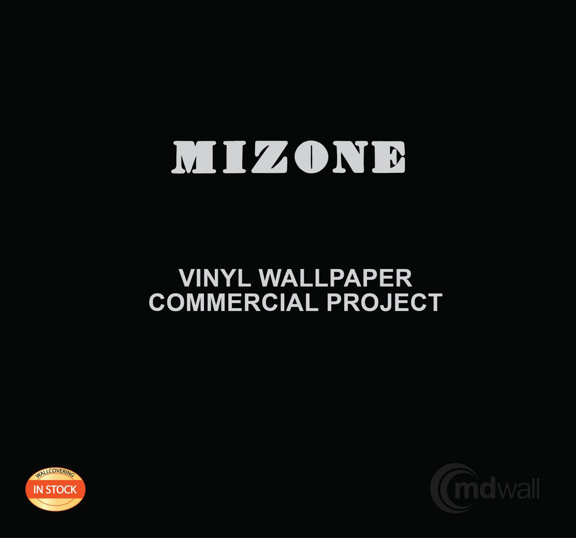 Mizone cover